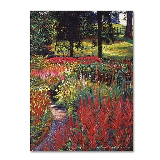 "Trademark Fine Art David Lloyd Glover 'Nature's Dreamscape' 14"" x 19"" Canvas Stretched (190836226825)"