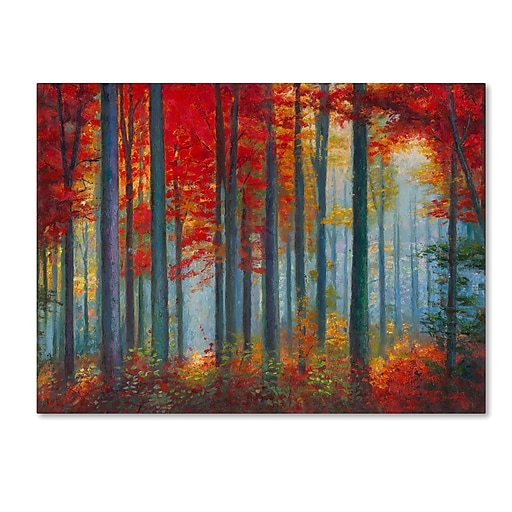 """Trademark Fine Art Daniel Moises 'Red Foreset' 14"""" x 19"""" Canvas Stretched (190836278060)"""
