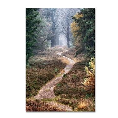 Trademark Fine Art Cora Niele 'Hiking Trail' 12