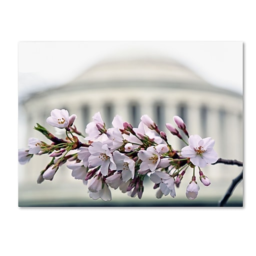 """Trademark Fine Art CATeyes 'Jefferson Memorial Blossoms' 14"""" x 19"""" Canvas Stretched (190836098644)"""