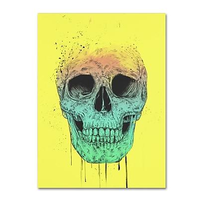 Trademark Fine Art Balazs Solti 'Pop Art Skull' 14