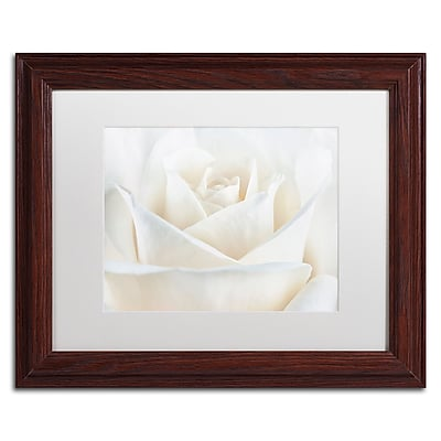 Trademark Fine Art Cora Niele 'Pure White Rose' 11
