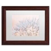 "Trademark Fine Art Cora Niele 'Dandelion Dew II' 11"" x 14"" Matted Framed (190836251582)"