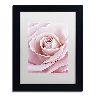Trademark Fine Art Cora Niele 'Pink Rose' 11