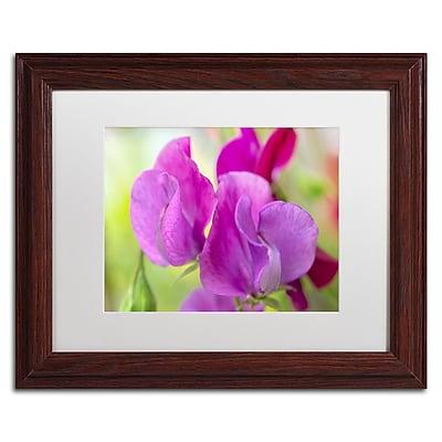 Trademark Fine Art Cora Niele 'Two Sweet Pea Flowers' 11