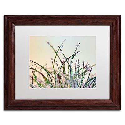 Trademark Fine Art Cora Niele 'Dewy Grass' 11