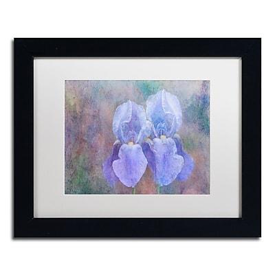 Trademark Fine Art Cora Niele 'Iris Blue Rhythm' 11