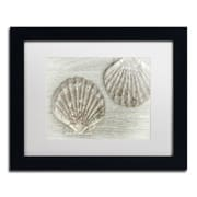 "Trademark Fine Art Cora Niele 'Two King Scallop Shells' 11"" x 14"" Matted Framed (190836258949)"