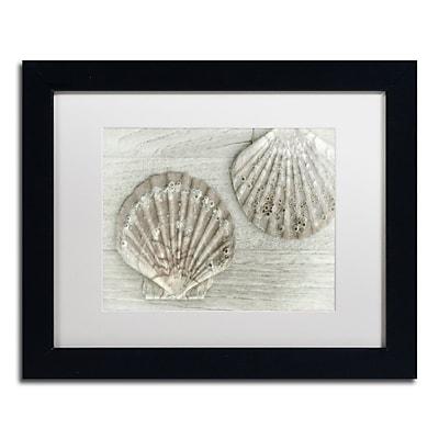 Trademark Fine Art Cora Niele 'Two King Scallop Shells' 11