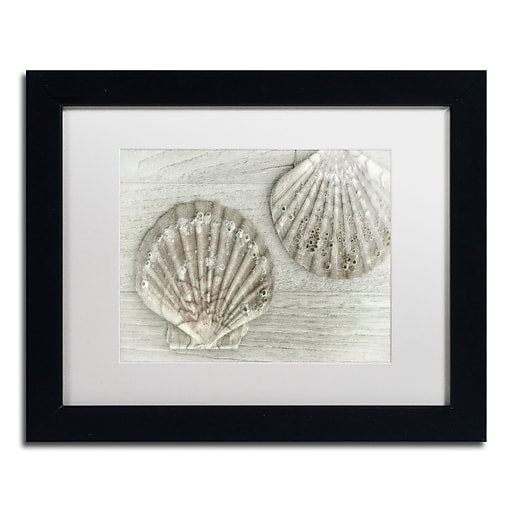 """Trademark Fine Art Cora Niele 'Two King Scallop Shells' 11"""" x 14"""" Matted Framed (190836258949)"""