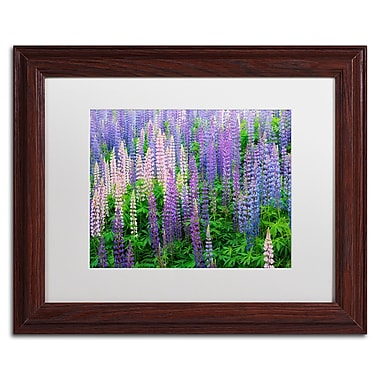 Trademark Fine Art Cora Niele 'Blue Pink Lupine Flower Field' 11