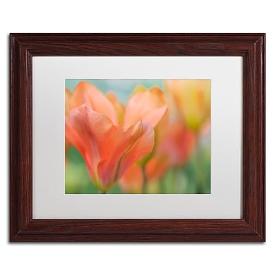 Trademark Fine Art Cora Niele 'Orange Wings Tulips' 11