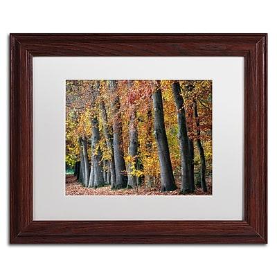 Trademark Fine Art Cora Niele 'Autumn Beeches I' 11