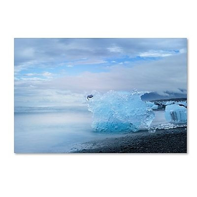 Trademark Fine Art Philippe Sainte-Laudy 'Blue Exception' 12