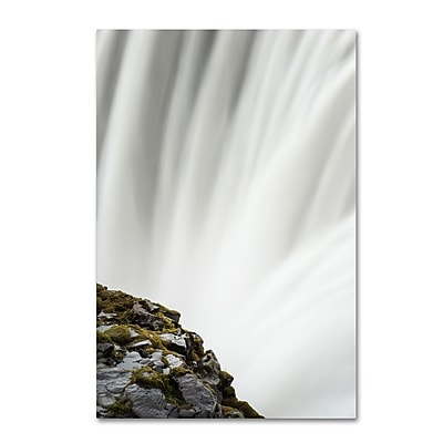 Trademark Fine Art Philippe Sainte-Laudy 'White Edited' 12