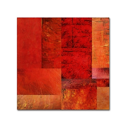 Trademark Fine Art Michelle Calkins 'Essence of Red' 18
