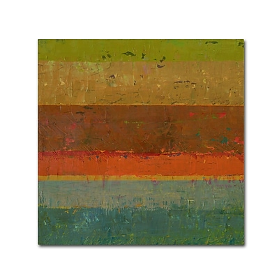 Trademark Fine Art Michelle Calkins 'Gold Line' 18