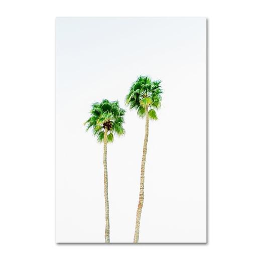 "Trademark Fine Art Ariane Moshayedi 'Palms 4' 12"" x 19"" Canvas Stretched (190836272129)"