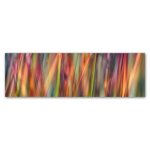 """Trademark Fine Art Cora Niele 'Grass Spectrography' 8"""" x 24"""" Canvas Stretched (190836317370)"""