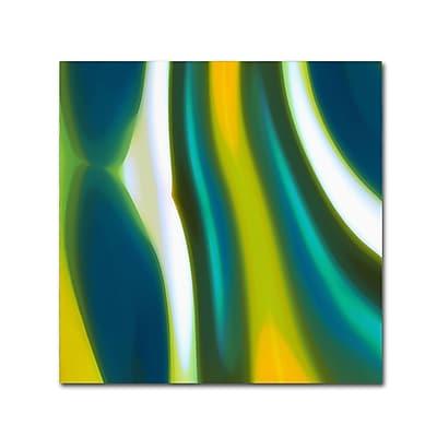 Trademark Fine Art Amy Vangsgard 'Spring Stream 2' 18