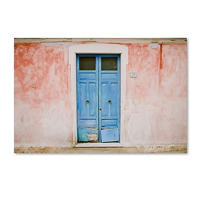 Trademark Fine Art Ariane Moshayedi 'The Blue Door' 12