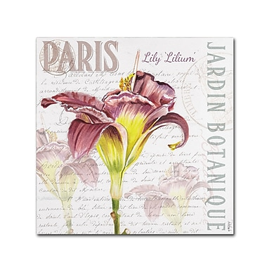 Trademark Fine Art Jennifer Redstreake 'Paris Botanique Lily Burgundy' 18