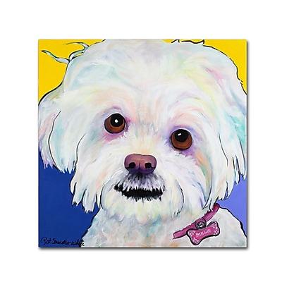 Trademark Fine Art Pat Saunders-White 'Lucy' 18