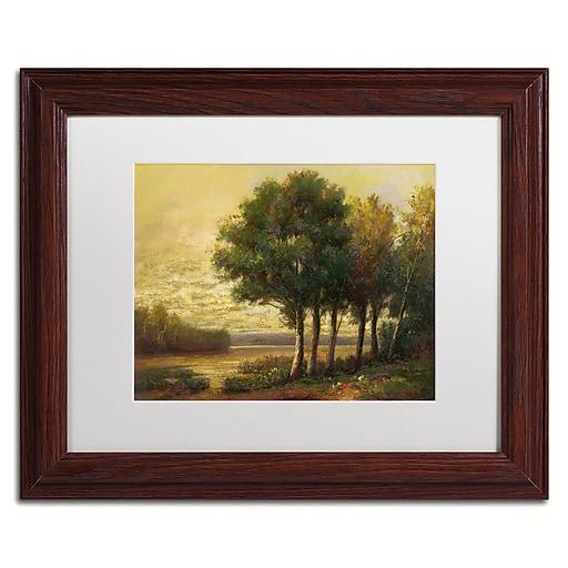 """Trademark Fine Art Daniel Moises 'Tranquility' 11"""" x 14"""" Matted Framed (190836189458)"""