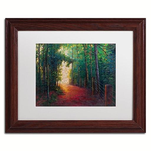 """Trademark Fine Art Daniel Moises 'Misty Trail' 11"""" x 14"""" Matted Framed (190836278008)"""
