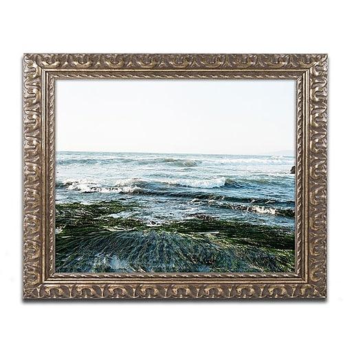 "Trademark Fine Art Ariane Moshayedi 'Waves Rolling In'd Art 16"" x 20"" Ornate Frame (190836276097)"