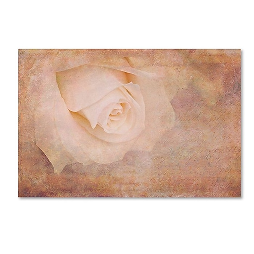 "Trademark Fine Art Cora Niele 'Vintage Rose Card' 30"" x 47"" Canvas Stretched (190836252916)"
