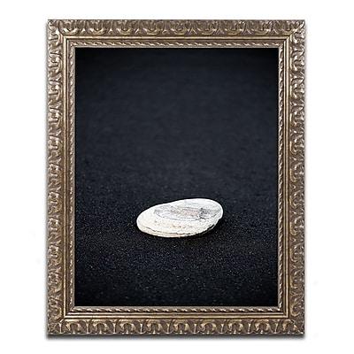 Trademark Fine Art Philippe Sainte-Laudy 'Pebbles on Black Sand'd Art 11