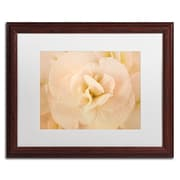 "Trademark Fine Art Cora Niele 'Amber Begonia Flower' 16"" x 20"" Matted Framed (190836256211)"