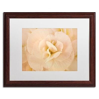 Trademark Fine Art Cora Niele 'Amber Begonia Flower' 16