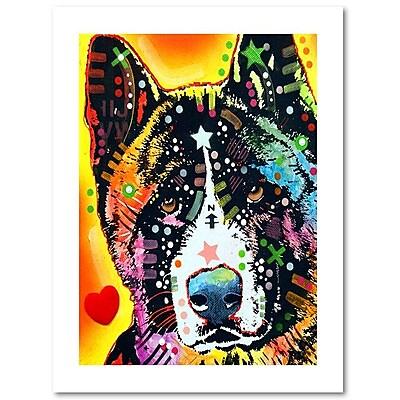 Trademark Fine Art Dean Russo 'Akita' 18