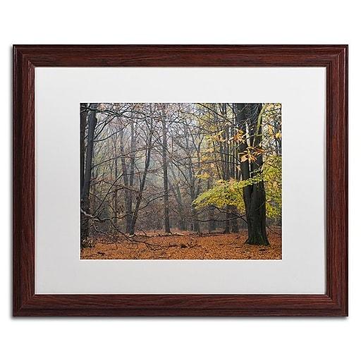 "Trademark Fine Art Cora Niele 'Hazy Wood' 16"" x 20"" Matted Framed (190836316496)"