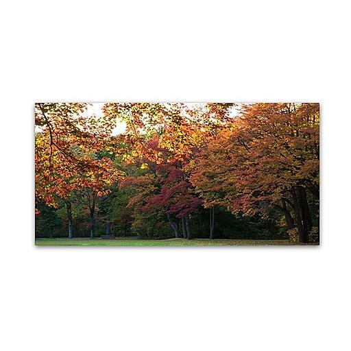 "Trademark Fine Art Kurt Shaffer 'Brilliant Autumn in the Park' 12"" x 24"" Canvas Art (886511964358)"