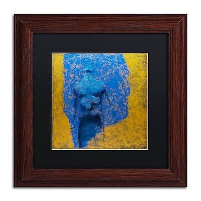 Trademark Fine Art Joarez 'Explosao' 11