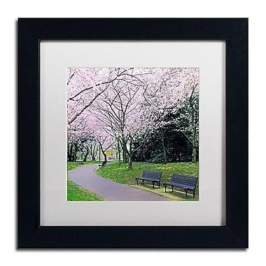 Trademark Fine Art CATeyes 'Spring Path' 11
