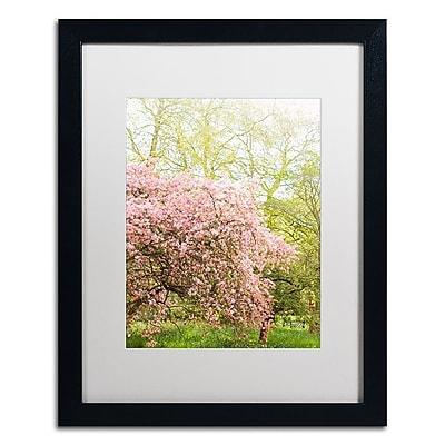Trademark Fine Art Ariane Moshayedi 'Pink Cherry Blossoms' 16