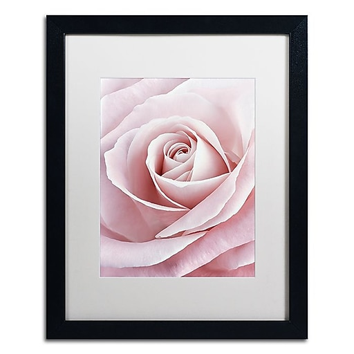 "Trademark Fine Art Cora Niele 'Pink Rose' 16"" x 20"" Matted Framed (190836308392)"