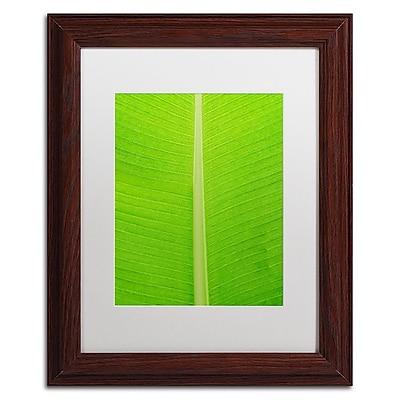 Trademark Fine Art Cora Niele 'Leaf Texture I' 11