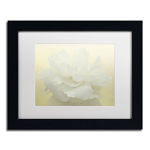 "Trademark Fine Art Cora Niele 'Pure White Peony' 11"" x 14"" Matted Framed (190836260348)"