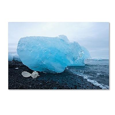 Trademark Fine Art Philippe Sainte-Laudy 'The Blue Egg' 12