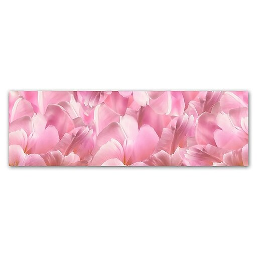 "Trademark Fine Art Cora Niele 'Pink Tulip Scape' 6"" x 19"" Canvas Stretched (190836317769)"