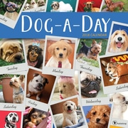 Tf Publishing 2018 Dog A Day Wall Calendar (18-1014)