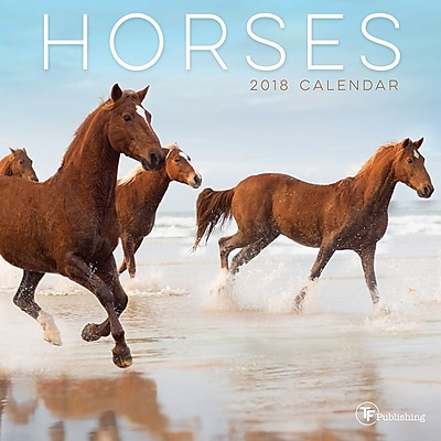 Tf Publishing 2018 Horses Mini Wall Calendar (18-2007)