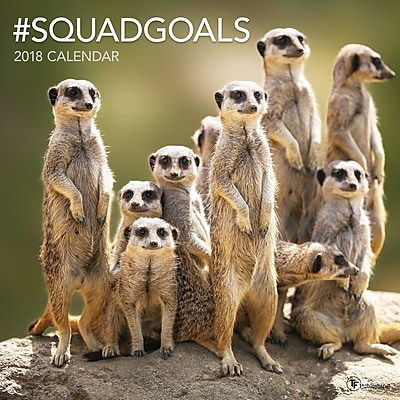 Tf Publishing 2018 #Squadgoals Wall Calendar (18-1124)