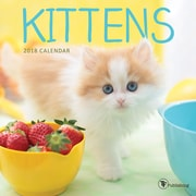 Tf Publishing 2018 Kittens Mini Wall Calendar (18-2009)