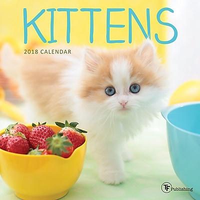 Tf Publishing 2018 Kittens Mini Wall Calendar (18-2009)
